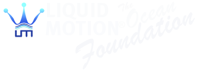liquid motion ocean foundation